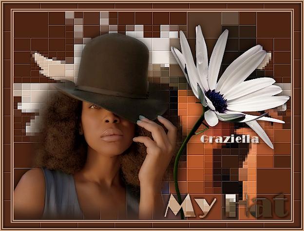 An den Beitrag angehängtes Bild: http://www.colorgrafic.altervista.org/tutorial_%20isa/myhat.png